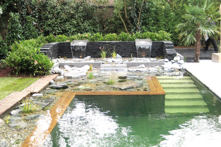 Natural swimming pools cleaning the pool with plants Natural swimming pool builders