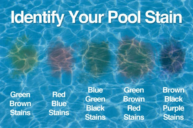 Pool Tips Orlando Fratelli Pool Service